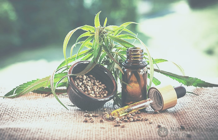 HEMP OIL: WHAT ARE THE DIFFERENT TYPES AND WHAT ARE THEY