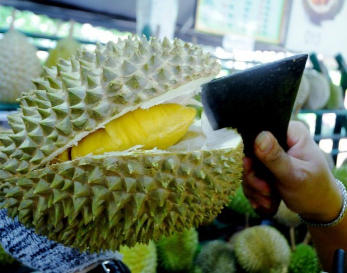 The best place to buy fresh Durian musang king
