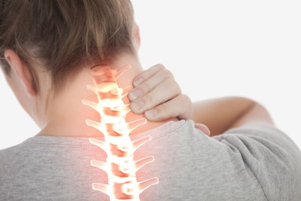Spine plays a important role if you want to have a healthy and active lifestyle.