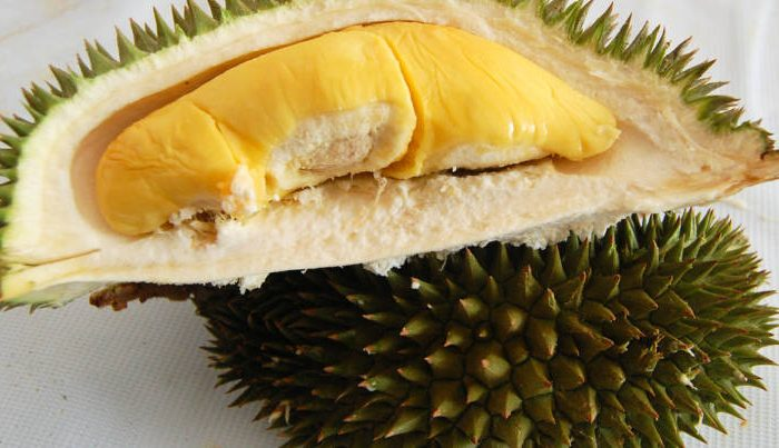 The Significance Of Singapore Durian Delivery And Their Advantages